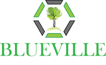 Blueville Capital