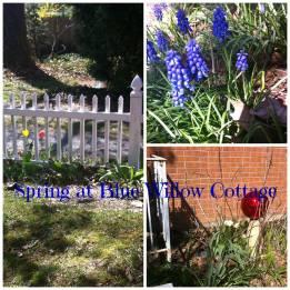spring bwc