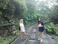 Wandering through the old mining tracks