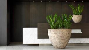 pflanzen-lobby-empfang