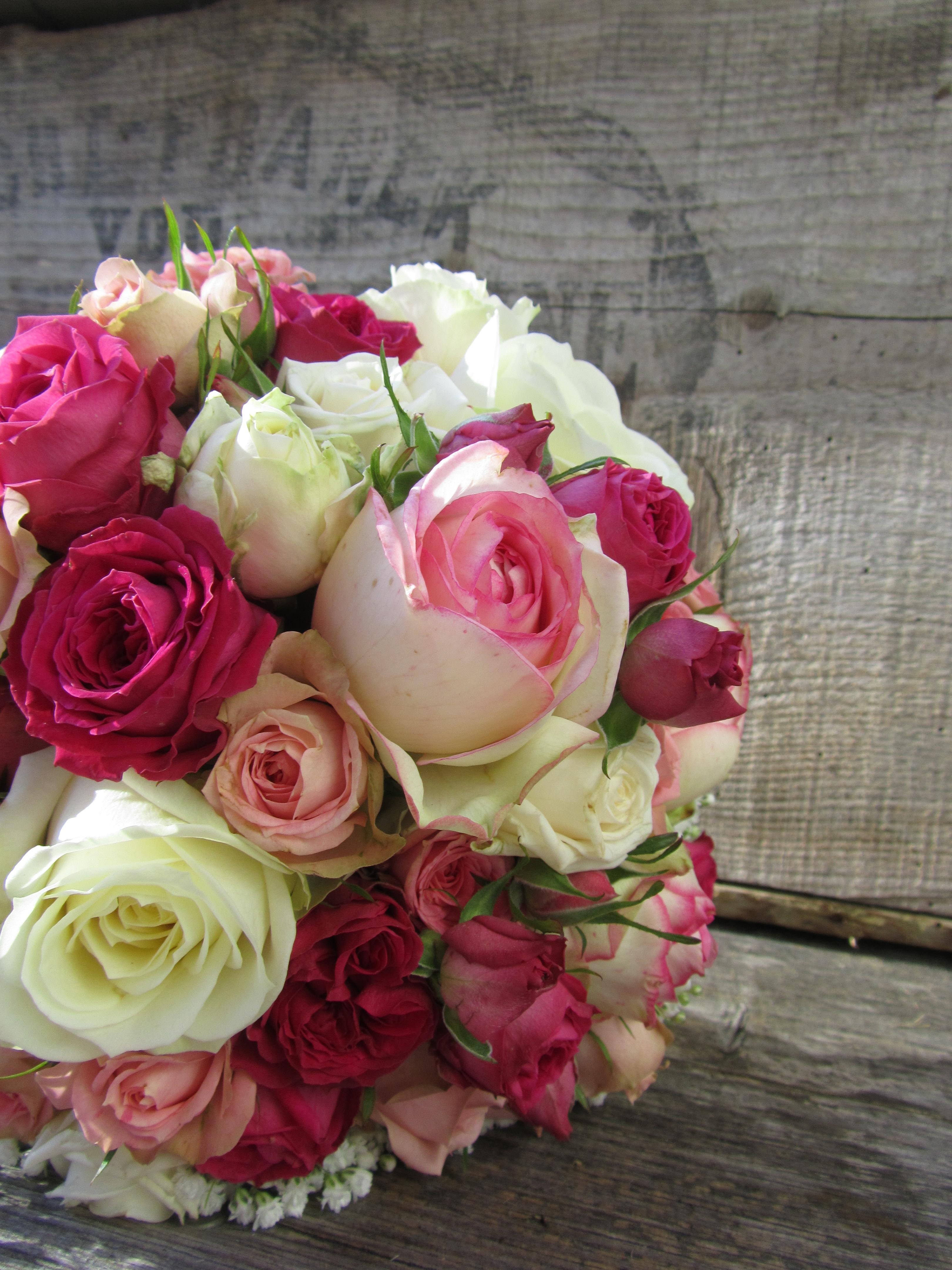 Blumen Im Juni Hochzeit Hortensie Magical Esmee Paars Lila