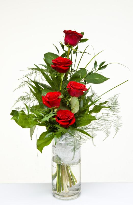 Rote Rosen Blumen 23 rote rosen jetzt bestellen bei