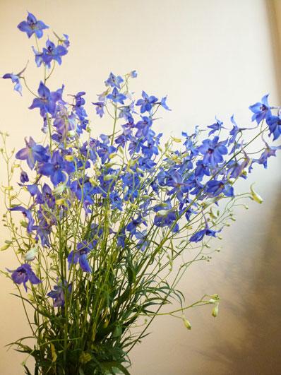 Florist in Dresden Blumen und Strue von BlumenKompositionen