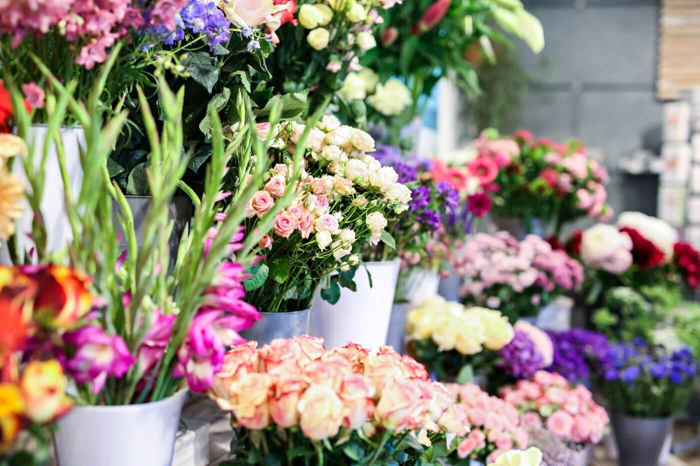 Blumen schenken  Blumen Schfer Pforzheim  Blumenladen
