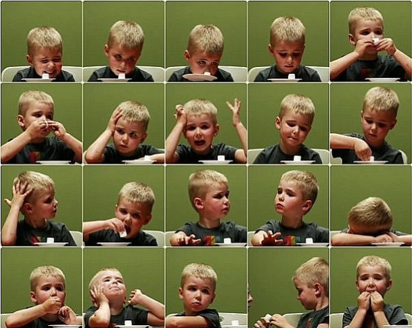 """Comparison and Contrast of the """"Marshmallow Experiment"""" and """"Don't! The  Secret of Self-Control""""   BluPapers"""