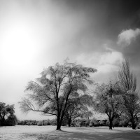 Monochrome Winter | Blurbomat.com