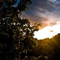 Almost Summer - Sunset   Blurbomat.com