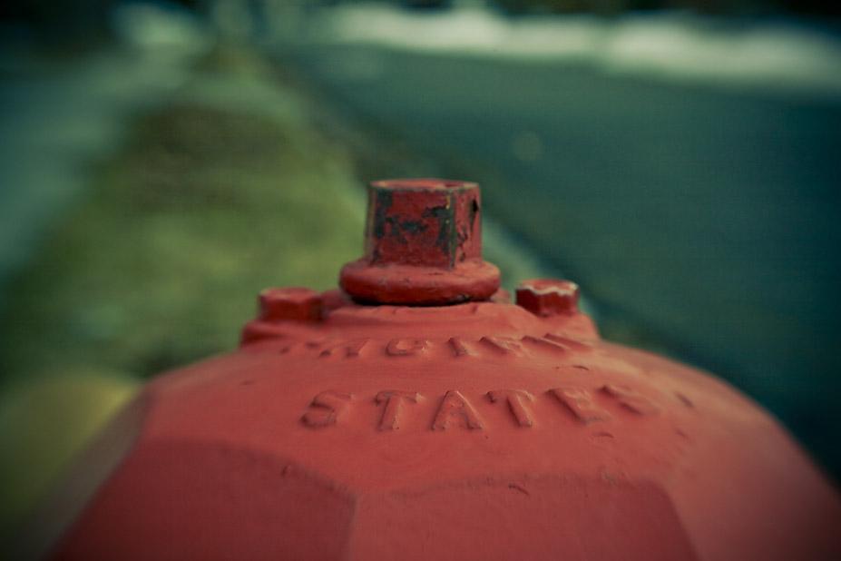 Hydrant Lid