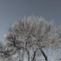 Clarity | Blurbomat.com