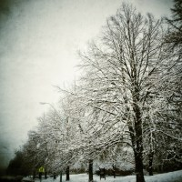 Let it Snow | Blurbomat.com