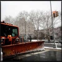 First day of spring 2015 in Brooklyn | Blurbomat.com