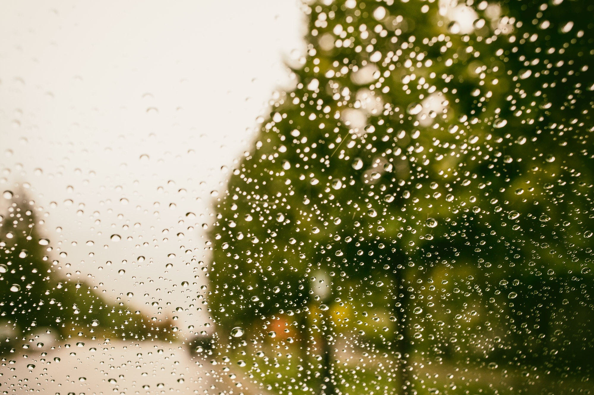 It's raining rain