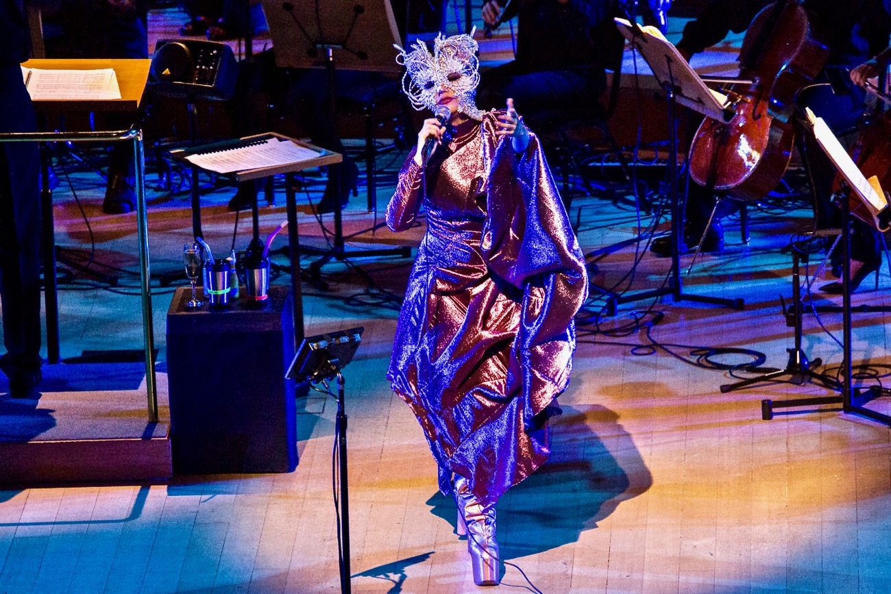 Björk @ Walt Disney Concert Hall 5/30/2017 // Photo by Santiago Felipe (@santiagraphy). Used with permission by www.BlurredCulture.com.