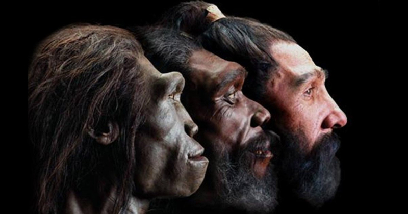 9.7-million-year-old teeth discovery in Germany could re-write human history