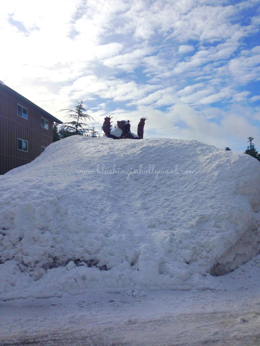 At the end of our street there was this huge bear statue that was almost completely buried by the snow!