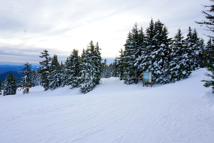 More beauty at the Timberline Lodge