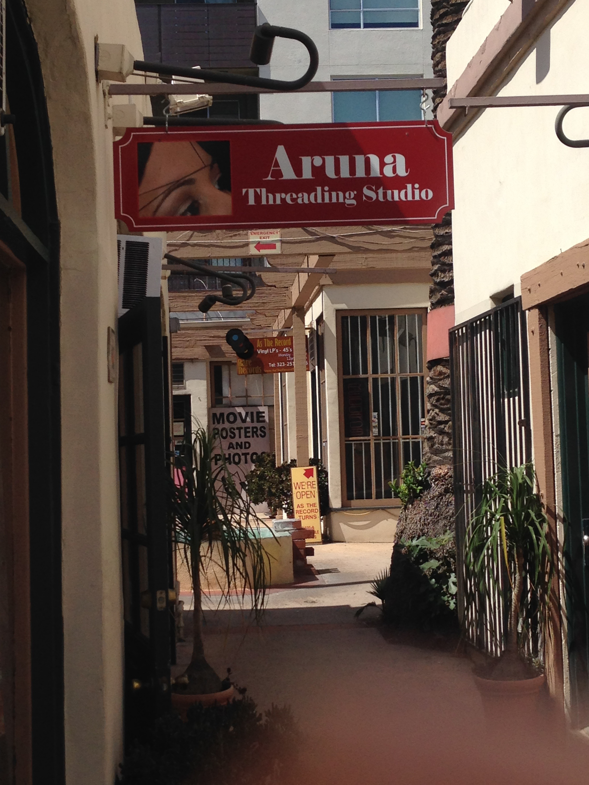 Eyebrow Threading and Tinting - Blushing in Hollywood