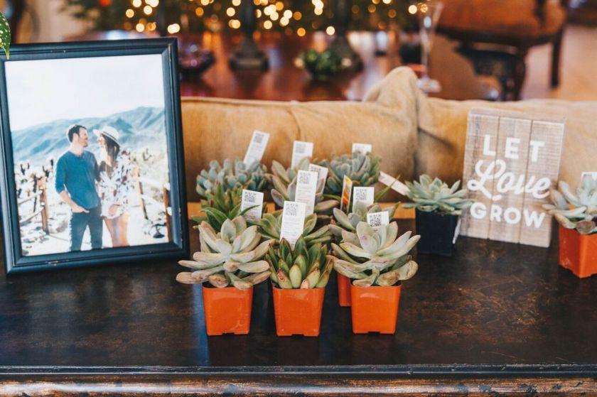 let-love-grow-succulents-bridal-shower-favor