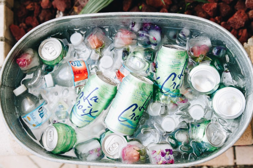 bevearge-bin-party-ideas-la-croix-water-flower-ice-cubes