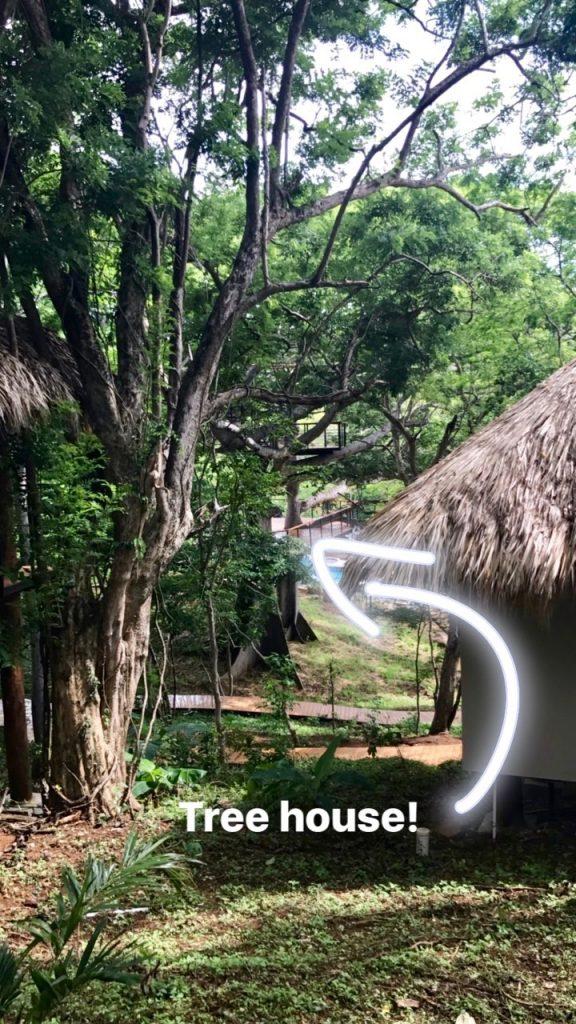tree-casa-resort-san-juan-del-sur-nicaragua