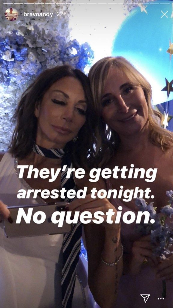 Danielle Staub and Sonja Morgan at Andy Cohen's baby shower. He joked on his Instagram story They're getting arrested tonight.. No question.