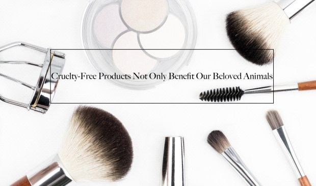 Why Cruelty-Free Products Not Only Benefit Our Beloved Animals