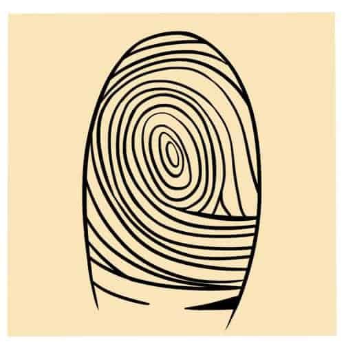 Swirls (Whorls)