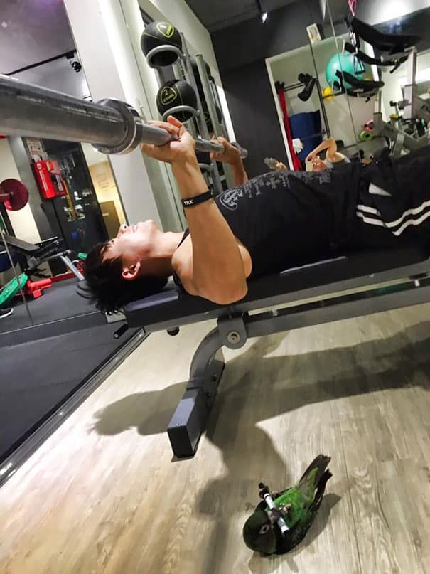 Situations When People Cannot Believe Their Eyes At The Gym 2