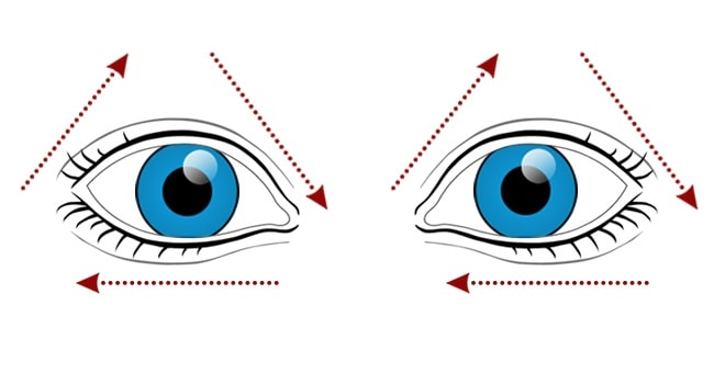 10 Best Exercises For Providing A Great Vision To Your Eyes 5