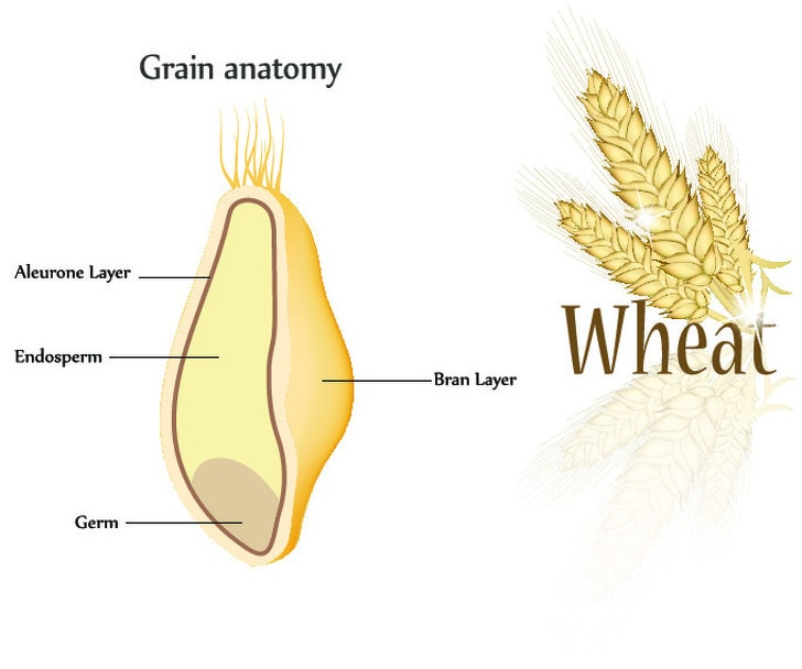 8 Grains That You Need To Eat When You Want To Lose The Weight 3