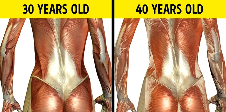24 Changes That Take Place In A Human Body Every 10 Years 3
