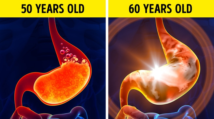 24 Changes That Take Place In A Human Body Every 10 Years 5