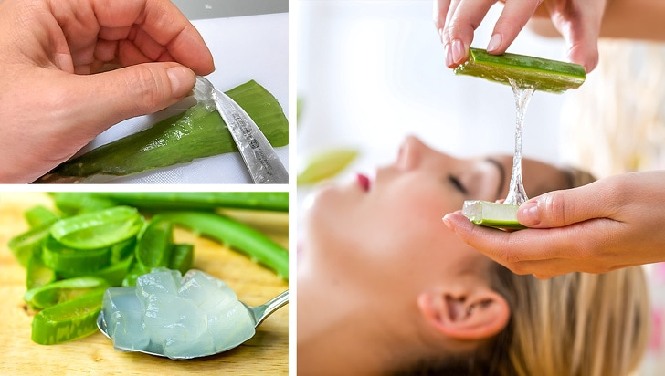7 Uses Of Aloe Vera That Can Make Your Life Easier 6