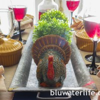thanksgiving table decor ~