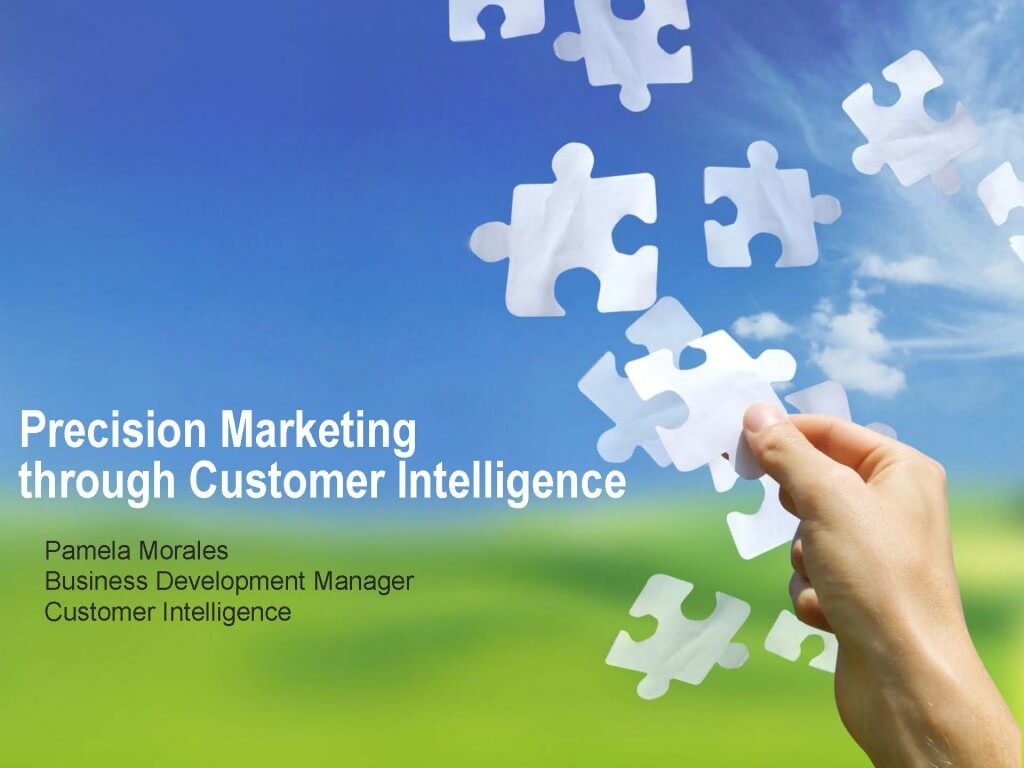 Precision Marketing through Customer Intelligence