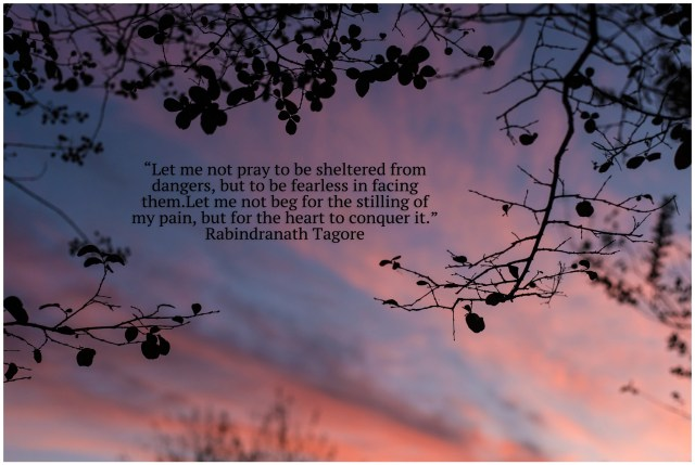 Nacogdoches photographer image of pink and purple sunset with tree branches and a quote by Rabindranath Tagore
