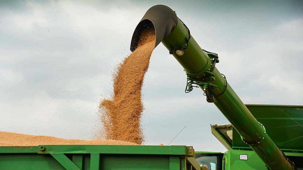 wheat markets look to