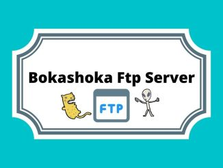 Bokashoka Ftp Server