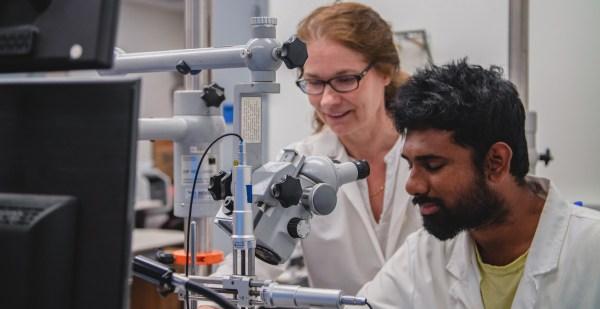 Graduate Biomedical Engineering