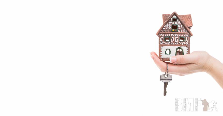 BMF_flex_160131_Hausbau