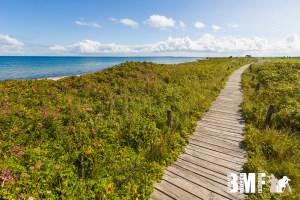 Strandwanderung an der Ostsee