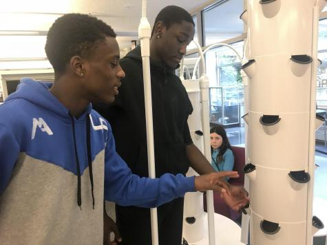 Hydroponics Take Root in Learning Commons