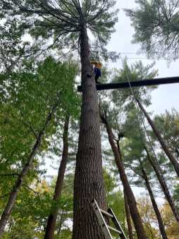 Grace Kandiah '23 goes through the high-ropes course. Photo by Edan Zinn '23.