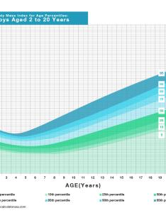 Kids body mass index chart for boys also bmi calculator  western bariatric institute rh westernbariatricinstitute