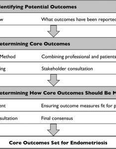 Download figure also protocol for developing disseminating and implementing  core rh bmjopenj
