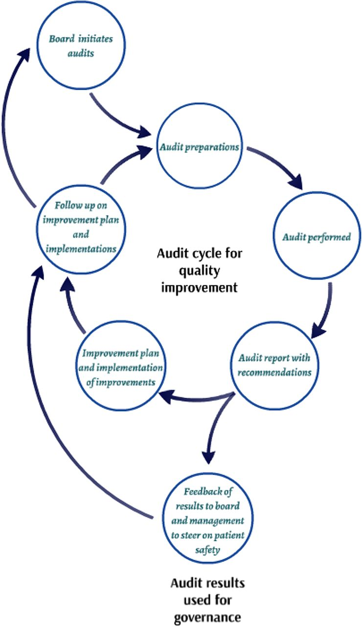 Evaluation of the organisation and effectiveness of internal audits to govern patient safety in