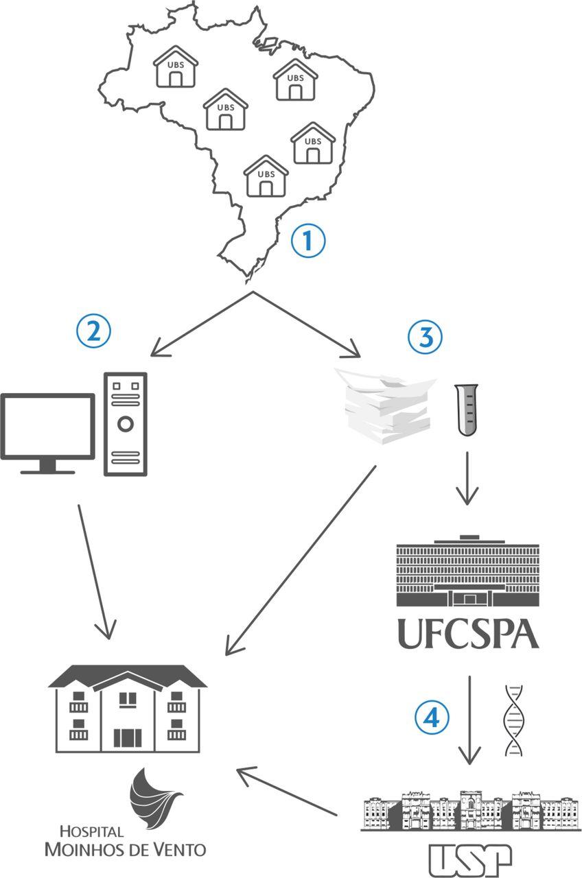 POP-Brazil study protocol: a nationwide cross-sectional