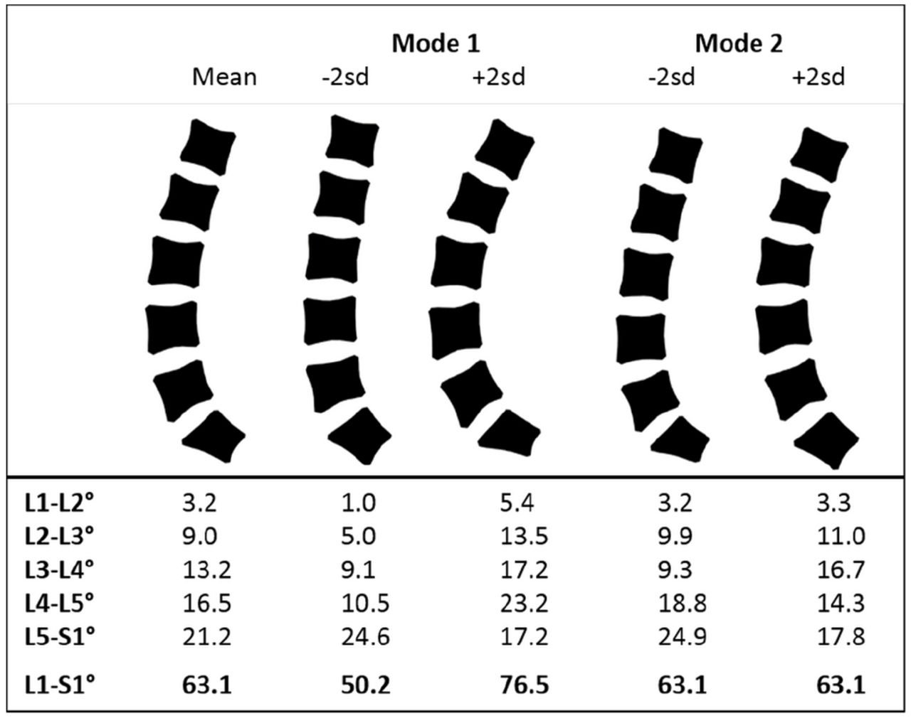 Variation In Lifting Kinematics Related To Individual Intrinsic Lumbar Curvature An