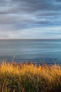 Grass, Sea and Sky