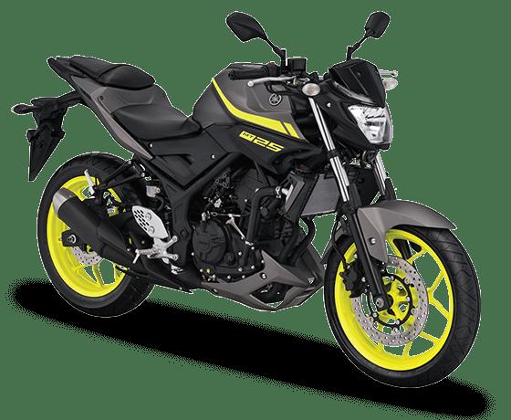 Yamaha-MT-25-2018